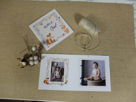 3falbumes-productos-impresntaoffset-infantil-modelo-fox01